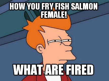 Meme creator how you fry fish salmon female what are fired for How do you fry fish